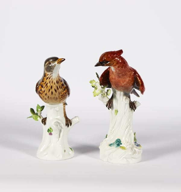 "Two Meissen polychrome porcelain sculptures ""Bird and parrot on tree trunks"""